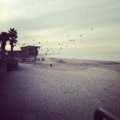 Pacific Beach in San Diego, CA