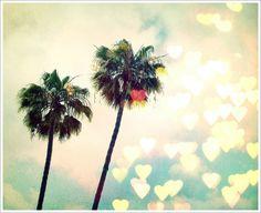 warm weather love
