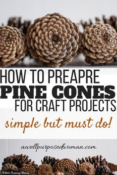 Do you want to use pine cones for craft projects this fall and winter? Then don't miss this tutorial on one essential step to not skip before using them for crafts. Check out this tutorial on how to prepare pine cones for craft projects.