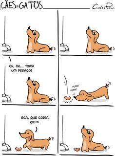 Cães e Gatos – Comida Like Animals, Funny Animals, Winnie Dogs, Dog Logo, Short Comics, Funny Laugh, Animal Memes, Funny Comics, I Love Cats