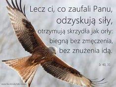 Little Prayer, God Loves You, Gods Love, Inspirational Quotes, Faith, Words, Motto, Prayers, Polish