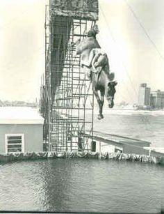 if i was born back then when they had diving horses i would want to be one of those girls