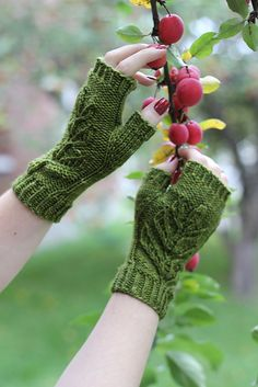 Ravelry: Project Gallery for Verdure mitts pattern by Alana Dakos
