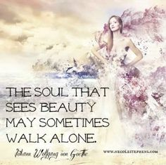 The soul that sees beauty may sometimes walk alone. John Wolfgang von Goothe