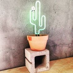 We love cactus especially because you don't have to water them  #cactuslover #neoncactus #budgielove #thebudgiesmuggler #terracottapots #functionspacesmelbourne #venuesmelbourne by the_budgie_smuggler