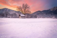 Frosty Cabin Under Warm Sky - Pinned by Mak Khalaf Merry Christmas =)  2015 Maximilian Fellermann Please check out: F E L E R M A N N . P H O T O G R A P H Y This is my landscape-profile on 500 px. Here I only upload my landscapes. If you want to see my other profile with animales check out: Maximilian Fellermann - Animales on 500px Landscapes bavariabayerncabindeutschlandgermanymountainssnowsunrisetreeswinter by Maximilian_Fellermann