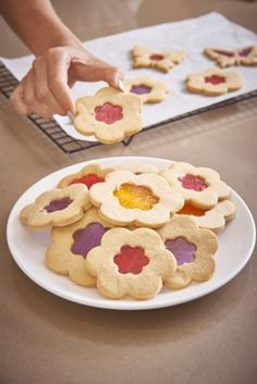 """Katherine Sabbath's Stained Glass Sugar Cookies – Inspired by Vintage Charm """"Golden Days"""""""