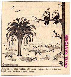 Humor, Vintage World Maps, Funny, Humour, Moon Moon, Ha Ha, Jokes, Funny Jokes, Hilarious