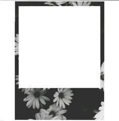 Free Polaroid Frame  Printables    Polaroid Frame