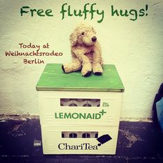 FREE FLUFFY HUGS at Weihnachtsrodeo in Berlin. Come and fluffify yourself. #weihnachtsrodeo #flauschig #freehugs #freefluffyhugs #lovelaughlobilat #flauschig #plushiesofinstagram #doglover #hugaddict #fluffifyyourself #fff #fluffydog #welpenliebe #hunde #perrosgram #puppylove