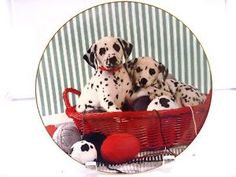 THE MASTER Comical Dalmatians Plate Dog Puppy  Artist Hamilton Coll Dalmatian