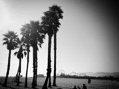 Santa Monica, Venice beach