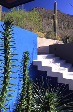 cantilevered stairs and a blue wall