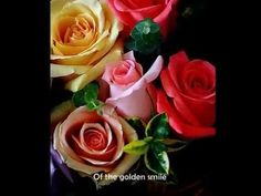 Andy Williams – Days of Wine and Roses
