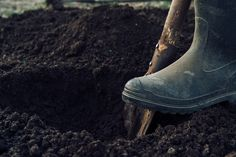 How to take soil samples for lab testing