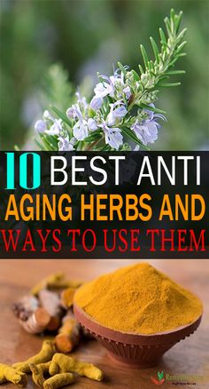 10 Best Anti Aging Herbs And Ways To Use Them #antiaging #harbs #anti #aging https://www.remedieslore.com/10-best-anti-aging-herbs-and-ways-to-use-them/ Anti Aging Eye Cream, Best Anti Aging Creams, Anti Aging Facial, Anti Aging Skin Care, Anti Aging Products, Best Face Products, Anti Aging Tips, Anti Aging Treatments, Acne Treatment
