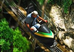 one of the most amazing experiences i have had.  The Jamaican Bobsled.