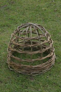 Garden cloche can be weaved from twigs to protect your early plants in the spring garden or support tall flowers from flopping