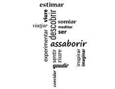 vinilos frases en catalán Disfrutar de la vida 04921