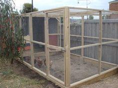 Cluckingham Palace Predator Proof Chicken Run Backyard