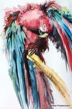 Macaw parrot bird Painting Bird watercolor by OrientalArt2029