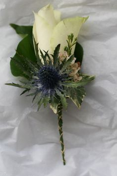 Rose and eryngium buttonhole. Both flowers are available for Scottish weddings in July. Contact The Stockbridge Flower Company for more details. Scottish Wedding Themes, Scottish Weddings, Wedding Bouquets, Wedding Flowers, February Wedding, Victoria Wedding, Marigold Flower, Flower Company, Buttonholes