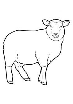 Easy Animal Drawings, Animal Sketches, Bird Drawings, Elephant Coloring Page, Farm Animal Coloring Pages, Sheep Drawing, Tracing Art, Sheep Art, Bunny Art