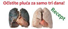 detoksikacija-čišćenje pluća
