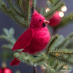 Felted Cardinal Bird