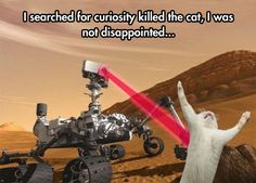 FILE - In this 2011 artist's rendering provided by NASA/JPL-Caltech, the Mars Science Laboratory Curiosity rover examines a rock on Mars. After traveling 8 months and 352 million miles, Curiosity will attempt a landing on Mars the night of Aug. Funny Animal Pictures, Funny Animals, Humorous Pictures, Curiosity Rover, Curiosity Mars, Curiosity Killed The Cat, Best Funny Photos, Funny Pics, Lol Photos