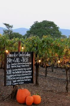 DIY chalkboard sign and pumpkins can really tie in a fall theme- Smoke Open Fire Cooking's Farm to Grill to Table Event / Catering By: Smoke Open Fire Cooking Napa Valley / Decor & Florals By: Hunter & Company, Event Planning and Design / Location: Big Ranch Farms Napa Valley
