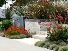 Gartenbereich mit roten Akzenten