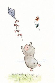 Mole and the kite