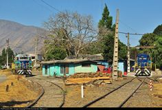 Locomotives parked next to railway workers houses. Llay Llay, Chile