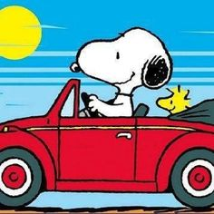 <3 The Snoopy Driving My First Car..The Beatle Bug!! Just Love You Snoopy~ Kimberly