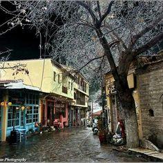 Τσινάρι,Θεσσαλονίκη