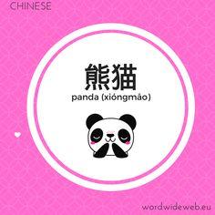 熊猫 panda Word Wide Web, Learn Mandarin, Photo And Video, Learning, Words, Instagram, Studying, Teaching, Horse
