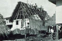 Constructing the Thatch Roof | Flickr: Intercambio de fotos