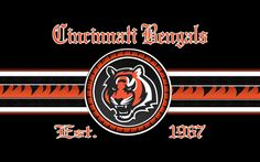 Angry Cincinnati Bengals Desktop WallPaper HD - http://imashon.com/sport/angry-cincinnati-bengals-desktop-wallpaper-hd.html