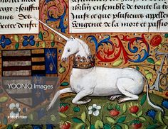 The unicorn, detail, manuscript, 1450. France, 15th century.