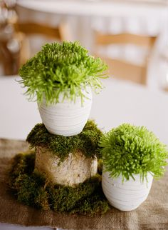Moss decor is a great accent piece.