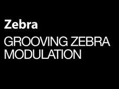 cool Uhe Zebra - Grooving Zebra Modulation - How To Tutorial VST Free Download Crack