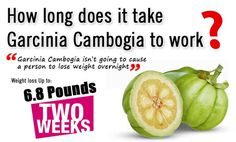 Garcinia Cambogia is not going to be effective right away. It usually will take a small period of time before the effects can be felt.