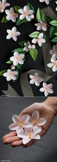 #Paperflowers #Paperappleblossom #papercraft www.LiaGriffith.com: