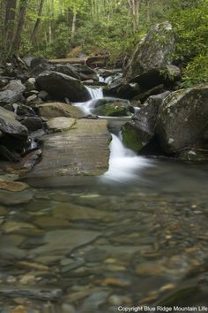 Alum Bluff Cave Trail.  So many photo opportunities along the creek.  http://blueridgemountainlife.com/alum-cave-trail-great-smoky-mountains-national-park/