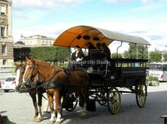 This lovely horse drawn carriage is situated below the Royal Palace in Stockholm, Sweden