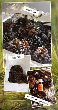 DIY Scented Pinecones - Use only opened (and therefore seeded) pinecones.  Bake on foil lined cookie sheet at 200 for 30 mins to kill the cooties and melt off the sap. Cool completely.  Throw in plastic bag with 20-30 drops essential oils of choice.  Seal and let sit for 5-10 days (patience!).  Will last for years.  Thank you @Peaches!