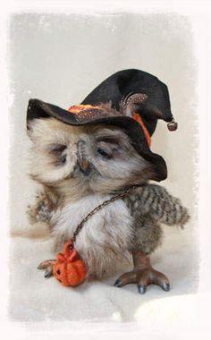 Markus the Halloween Owl by Bears & Friends by Jelena K. (xellisart)