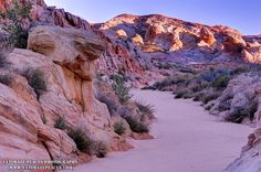 Valley of Fire at Sunrise - Nevada - Gary Whitton [OC] [1000x664]