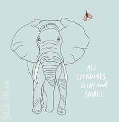 All creatures. Great and small. Known and unknown. Seen and Unseen. Grateful.